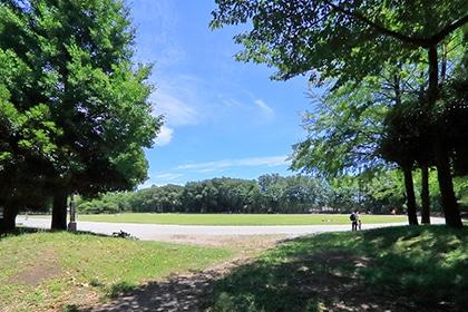 城北中央公園(約400m・徒歩5分)